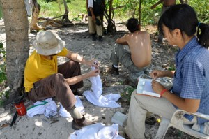 Ng and Glor gather data on the dewlaps of <em>A. distichus</em> (Dominican Republic 2009).